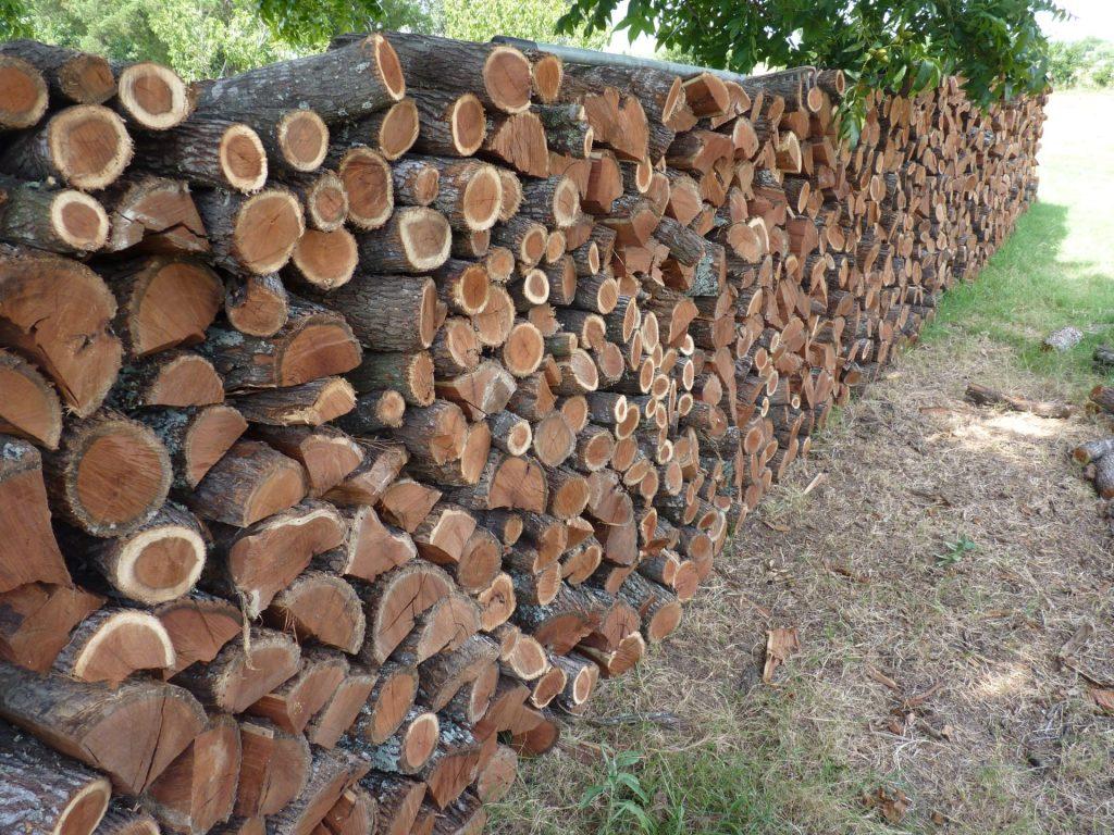 Texas Firewood Mesquite