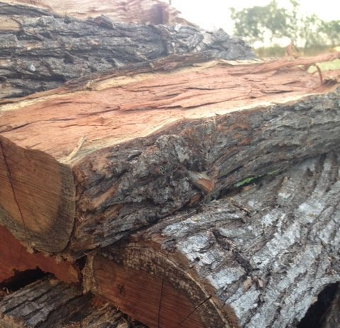 Mesquite BBQ Wood